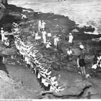 13 Exercícios de ginástica na Praia de João d´Évora. Foto de Manuel N. Ramos, 1936..jpg