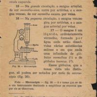 CienciasNaturais_pag33.jpg